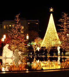 Downtown Salt Lake City Christmas Lights
