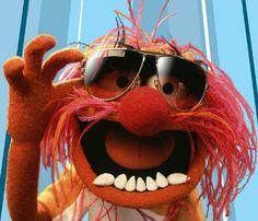 """""""Animal"""" - mein Vorbild (als Drummer)! Übrigens soll Keith Moon (The Who) beim Designen der Puppe Pate gestanden haben. Es würde passen! ;-)"""