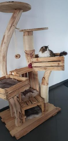 Zufriedene Schnurrer - Naturholzbäume für Katzen y manualidades Diy Cat Tower, Homemade Cat Tower, Homemade Dog, Cat Climbing, Ideias Diy, Wooden Tree, Cat Room, Cat Condo, Outdoor Cats