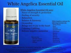 Young Living White Angelica essential oil ID #1729616