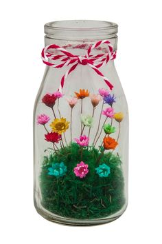 Little Blooming Wonder - Milk Bottle filled with real flowers that last up to 10 years – The Thoughtful Gifter