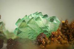 Adamite Zn2AsO4(OH) Locality: Cap Garonne Mine, Le Pradet, Var, Provence-Alpes-Côte d'Azur, France Field of View: 2.5 mm Blue green Adamite. Collection and photo: Stephan Wolfsried Adamite is the...