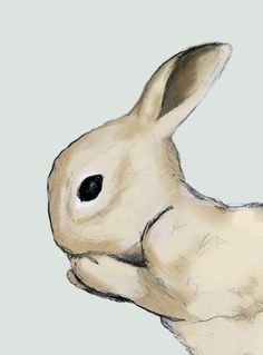 Rabbit Illustration 8x10 print archival kids room art by claire, $17.00