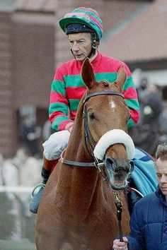 Damian jones horse whisperer