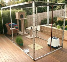 Wood frame and strong netting cat room