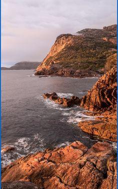 10 Best Tasmania Beaches. Off Tasmania's northeast coast, Flinders Island is the largest of the 52 islands in the Furneaux group, nicknamed the Mountains in the Sea. #travel #summer #Australia #beaches #tasmania #water #freycinet #nature Tasmania, Beautiful Beaches, Islands, Scenery, Wildlife, Coast, Ocean, Australia, Mountains