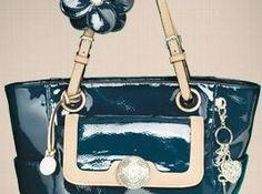 Love this bag!  http://kwallen.graceadele.us