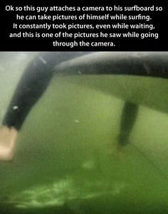 And this is why I don't go in the water...