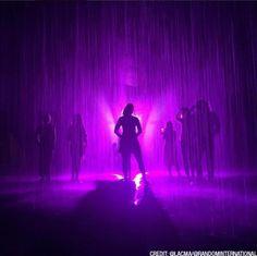LA Turns Purple for Prince | LACMA Rain Room