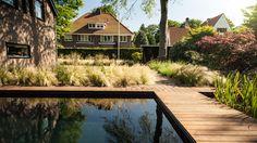 Modern tuinontwerp geïnspireerd op de duinen en verbonden met het interieur #zwemvijver | Modern garden design inspired by the dunes, connected to the interior #natural #pool