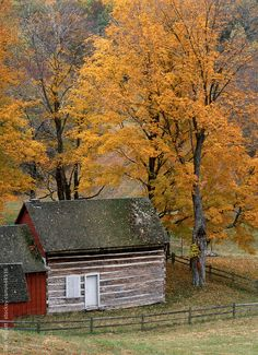 pioneer settler cabin from 1800's in backcountry of Indiana autumn foliage By NATGAL Available to license exclusively at Stocksy