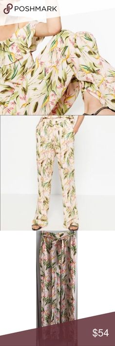Zara Bird Of Paradise Pants Cute bird of paradise floral print pants by Zara. All over multi colored print. Background color is a faint pink. Comes with fabric belt. #11301702 Zara Pants