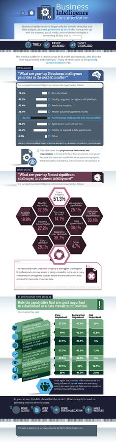 Infographics - Why Business Intelligence Is Targeted At You