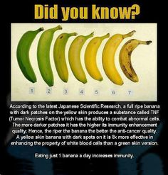 Health benefits of bananas; the more browned the banana is. the more anti-cancer fighting properties we get. Health Facts, Health And Nutrition, Health And Wellness, Banana Nutrition, News Health, Fruit Nutrition, Sports Nutrition, Health Quotes, Natural Cures