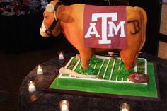 Google Image Result for http://djscottshirley.files.wordpress.com/2011/01/aggie-bevo.jpg