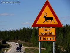 Reindeer Warning: reindeer crossing road sign in Lapland in Northern Finland, the written sign: a GREAT risk for a collision during the following 50 kilometres.