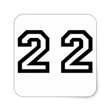 numero 22 - Pesquisa Google