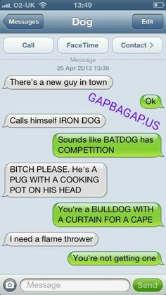 Funny Text Of The Day ft. Funny Dog