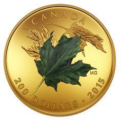 Pure Gold Coloured Set – Alluring Maple Leaves of Fall – Mintage: 300 Canadian Coins, Coin Design, Gold And Silver Coins, Mint Coins, Commemorative Coins, How To Get Rich, Coin Collecting, 1 Oz, Art Pictures
