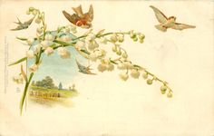 lily of the valley, two sparrows, inset distant church Vintage postcard