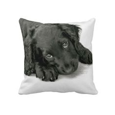 Sprocker Spaniel Dave Throw Pillows
