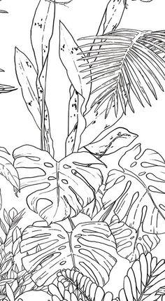 Papier peint Jungle Tropical Noir & Blanc pour Ohmywall créé par le duo d'artistes Caddous & Alvarez dans l'esprit d'une fresque murale. Leurs dessins, imaginés et tracés à quatre mains, font apparaitre un décor mural foisonnant, apaisant, évoquant une nature sauvage pure, l'éden au milieu de la forêt tropicale. 6 couleurs - 4 formats - 24 Possibilités. Tropical Jungle Wallpaper black and white, this tropical forest has the spirit of an eden, you are into the wild nature