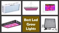 Growing Plants Indoors With Artificial Light-Every Gardener Should know Hydroponic Vegetables, Best Led Grow Lights, Growing Plants Indoors, Hydroponics System, Houseplants, Indoor Plants, Education, Inside Plants, Aquaponics System