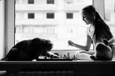 """Segundo Siria Maria Mohamed, """"o olhar felino confere ao bichano um espírito apurado, capaz de penetrar nas camadas mais profundas da alma dos Seres Humanos. Através de seu olhar, o bichano pode perceber as intenções  de outros seres, por isso, ficam várias horas olhando fixamente para um objeto ou local. Os gatos expressam muito amor e carinho no olhar, além disso, quando estão caçando, possuem um magnetismo de atração semelhante ao olhar da cobra."""""""