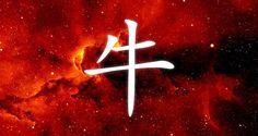 Horoskop chiński Bawół | Rok Bawoła