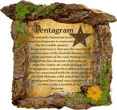 Book of Shadows: Pentacle & Wicca page can find Wicca and more on our website.Book of Shadows: Pentacle & Wicca page Wiccan Symbols, Symbols And Meanings, The Middle Show, Alphabet Symbols, Wiccan Jewelry, Information Graphics, Spiritual Gifts, Pentacle, Book Of Shadows