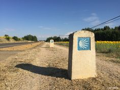 Road to Carrion de los Condes #Camino 2015 july McG - day 19