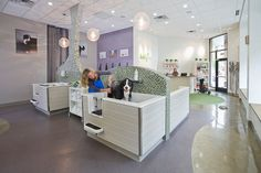 BUBBLY PAWS DOG WASH, 3730 Grand Way St Louis Park, MN 55416