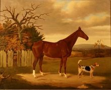 Superb 18th Century British sporting painting. A chestnut hunter and a dog from Tresor Art Gallery on Ruby Lane