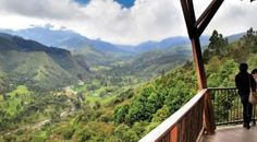 Visit the Cocora Valley - Home of the wax palm