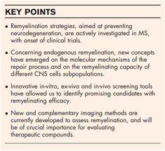 Repair strategies for multiple sclerosis | LiveWiseMS