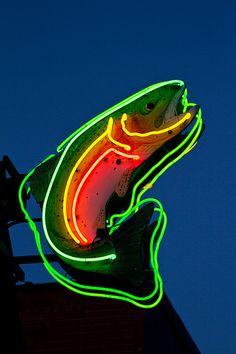 Neon Trout.