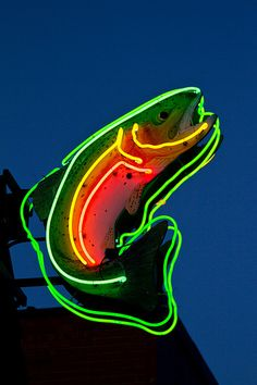 Neon Trout. Tim Wade's Northfork Anglers. Orvis Store - Cody Wyoming