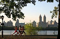 Jogging in Central Park - New York Central Park, Barclays Center, Flatiron Building, Washington Square Park, Jacqueline Kennedy Onassis, Greenwich Village, Coney Island, Empire State, Marathon