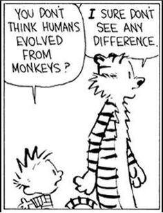 (120) What are some of the best Calvin and Hobbes cartoons? - Quora