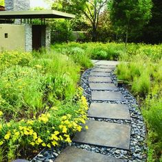 Metal borders help to create a sweeping path filled with large format square pavers swimming in shale off cuts, the structured path is softened by the flowering grass plantings - the style echoes elegant refined Zen-like calmness with refinement of Frank Lloyd Wright.