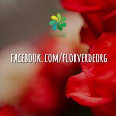 Catch us on @Facebook! www.facebook.com/florverdeorg