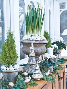 Love the fresh paperwhites, mercury glass and urns.