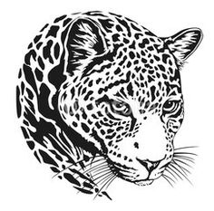 Jaguar Head Lineart More Information