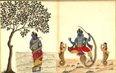 Krishna Kaliyadamana. Album of 89 illustrations of the Bhagavata Purana. Probably Tamil Nadu and south-eastern Karnataka. c.1780-1785.