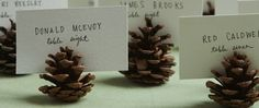 pinecone place cards!
