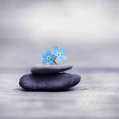 Meditation by *Healzo on deviantART