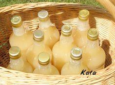 KataKonyha: Alma ivólé Food Crafts, Diy Food, Pickling Cucumbers, Hungarian Recipes, Winter Food, Milkshake, No Bake Cake, Food Storage, Spices