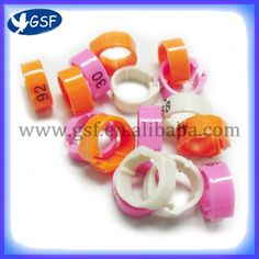 Plastic pigeon bands ring with number put on pigeon ring holders bhs