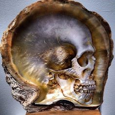 Incredible skull shell (oil on mother of pearl) by Gregory Halili found via Stacey Ransom @hld4ransom