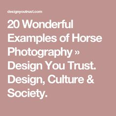 20 Wonderful Examples of Horse Photography » Design You Trust. Design, Culture & Society.